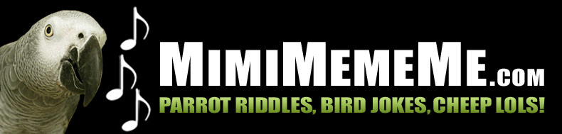 MimiMemeMe.com - Parrot Riddles, Bird Jokes, Cheep LOLs!
