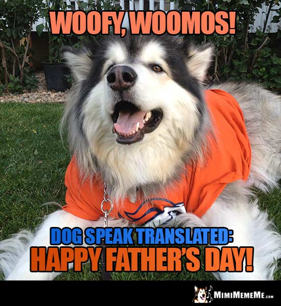 Denver Broncos Dog Says - Woofy, Woomos! Dog speak translated: Happy Father's Day!