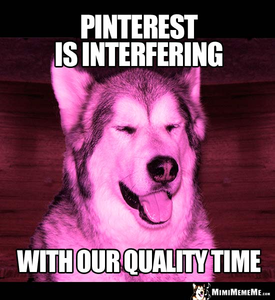 Crafty Girl Dog Says: Pinterest is interfering with our quality time.