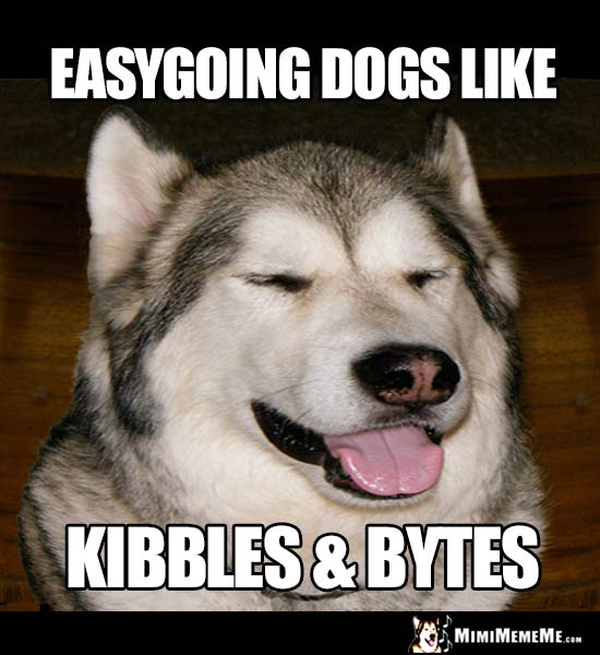 Smiling Dog Says: Easygoing dogs like Kibbles & Bytes