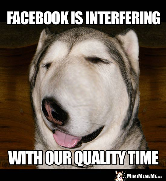 Nosey Dog Says: Facebook is interferiing with our quality time.