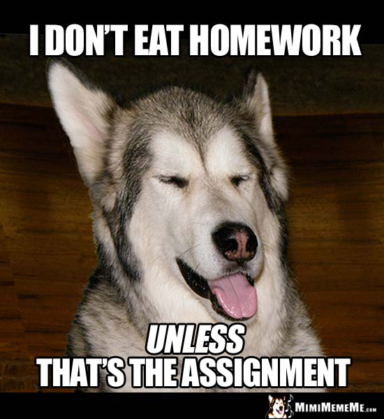 Smart Dog Says: I don't eat homework, unless that's the assignment.