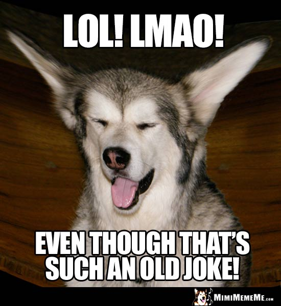 Laughing Dog Says: LOL! LMAO! Even though that's such an old joke!