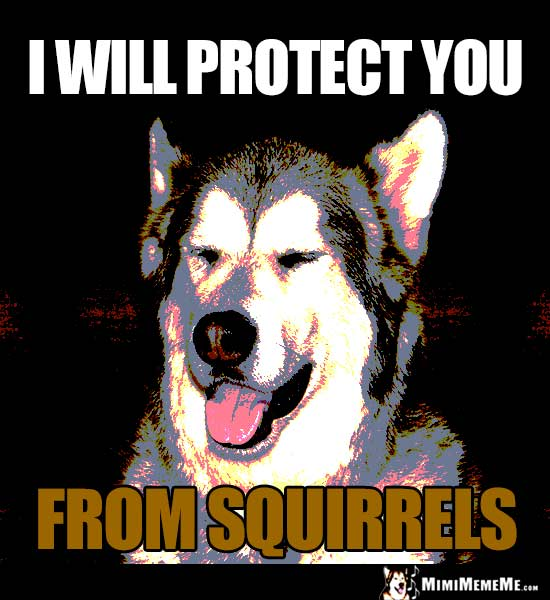 Smiling Dog Says: I will protect you from squirrels.