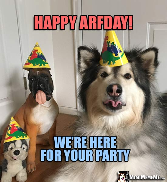 Dog Birthday Meme: Happy Arfday! We're here for your party