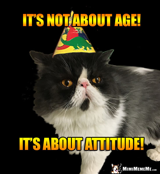 Cat Birthday Humor: It's not about age! It's about attitude!