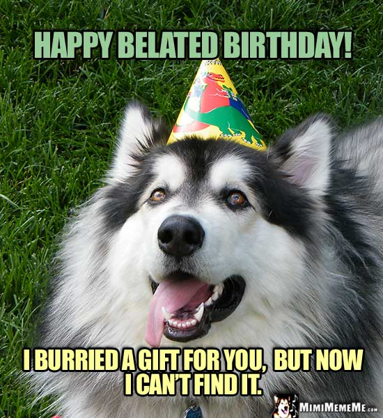 Dog Wearing Party Hat Says: Happy Belated Birthday! I burried a gift for you, but now I can't find it.