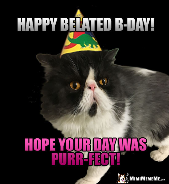 Cat Wearing Party Hat Says: Happy belated B-Day! Hope your day was purr-fect!
