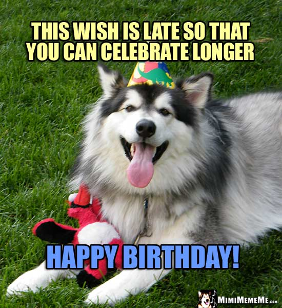 Dog Wearing Party Hat Says: This wish is late so that you can celebrate longer. Happy Birthday!