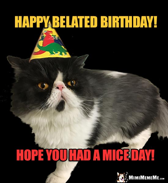 Cat Wearing Party Hat Says: Happy Belated Birthday! Hope you had a mice day!