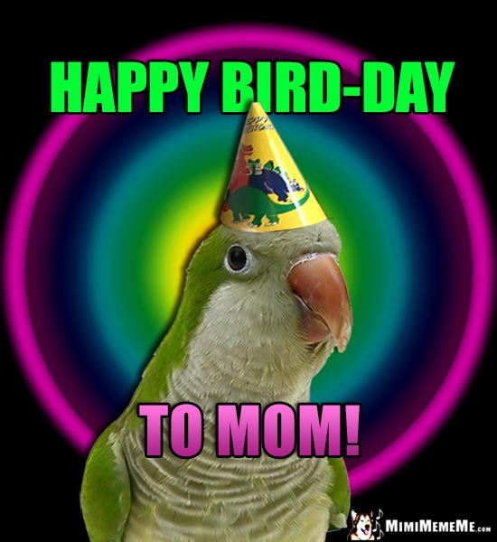 Parrot in Party Hat Says: Happy Bird-Day to Mom!