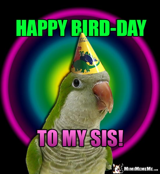 Parrot Wearing Party Hat Says: Happy Bird-Day to My Sis!