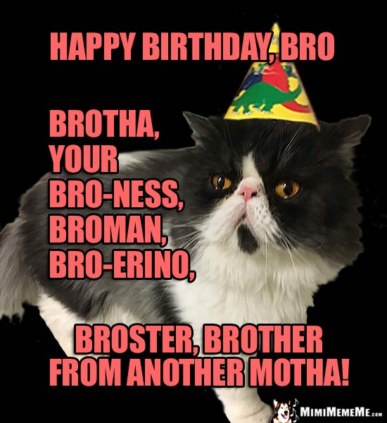 Cat in Party Hat: Happy Birthday, bro, brotha, your bro-ness, broster...