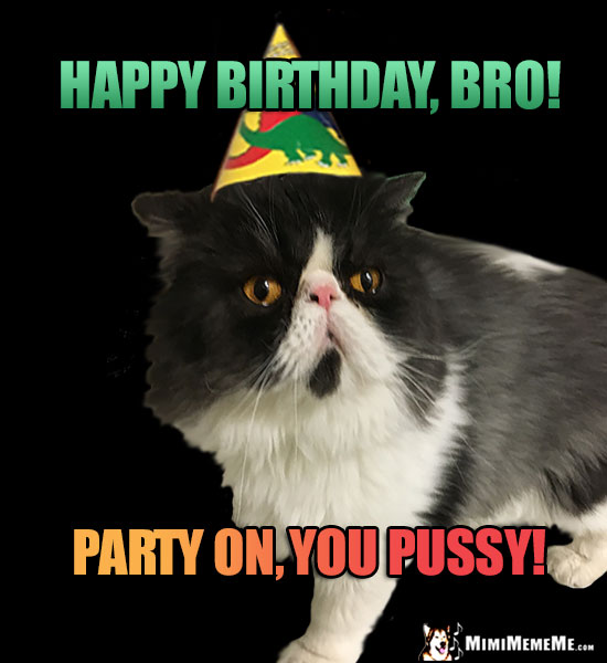 Manly Cat Wearing Party Hat Says: Happy Birthday Bro! Party on, you pussy!
