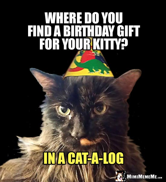 Cat in Party Hat: Where do you find a birthday gift for your kitty? In a cat-a-log.