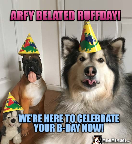 Dog Wearing Party Hat Says: Arfy Belated Ruffday! We're here to celebrate your B-Day now!