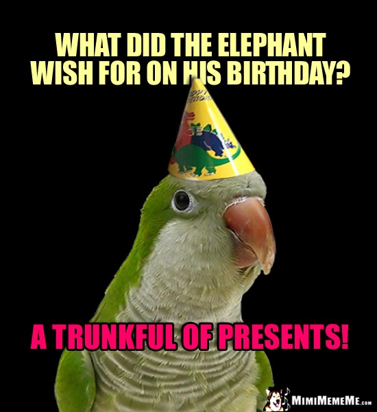 Party Bird: What did the elephant wish for on his birthday? A trunkful of presents!