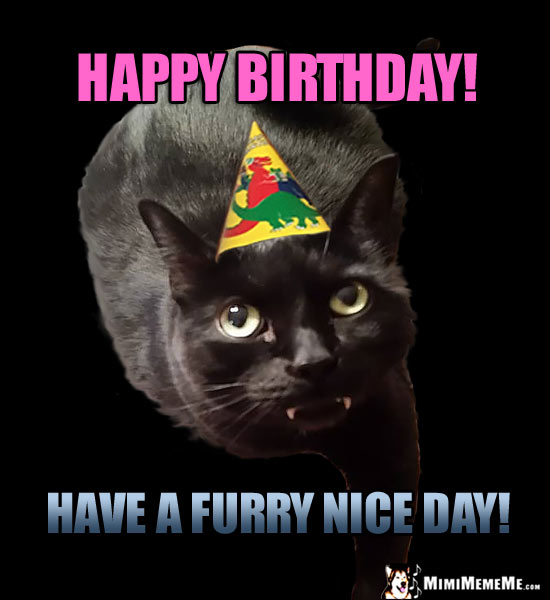 Cat in Party Hat Says: Happy Birthday! Have a furry nice day!