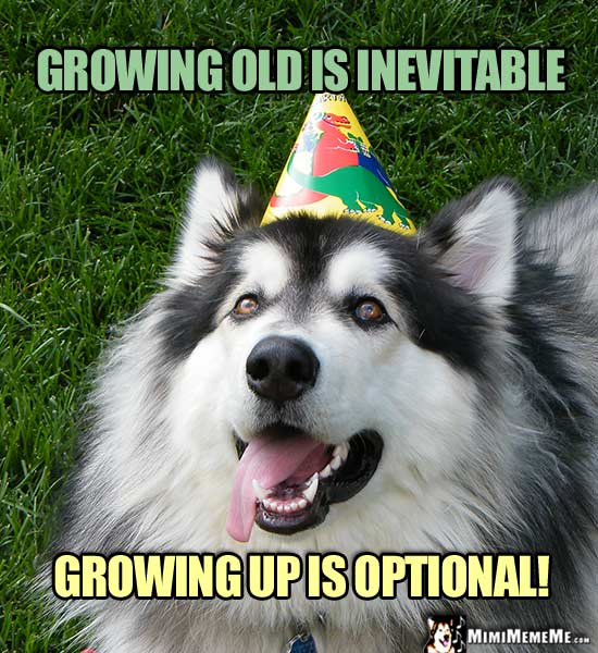 Dog in Party Hat Says: Growing old is inevitable. Growing up is optional!