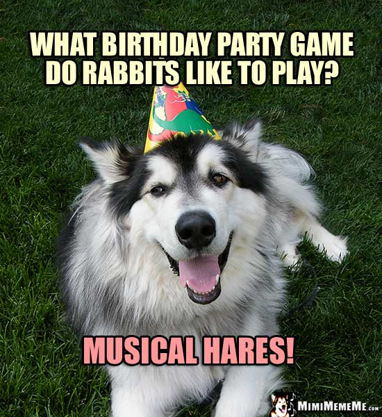 Party Dog Asks: What birthday party game do rabbits like to play? Musical Hares!