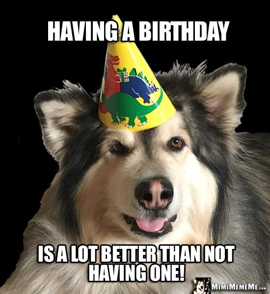 Big Party Dog Says: Having a birthday is a lot better than not having one!