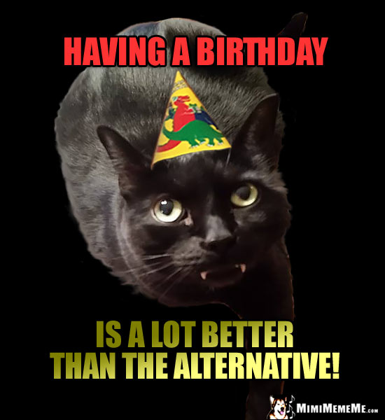 Dark Party Cat Says: Having a birthday is a lot better than the alternative!