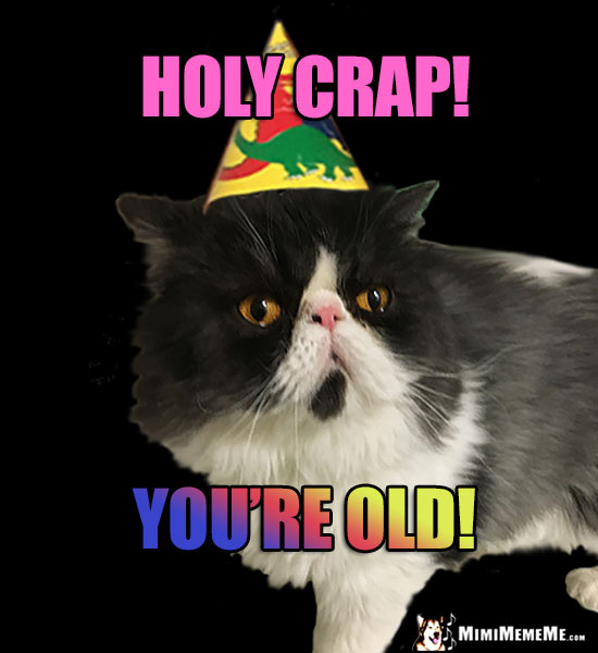 Smug Party Cat Says: Holy Crap! You're Old!