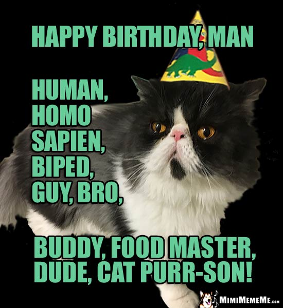 Party Cat Says: Happy Birthday Man, Human, Homo Sapien, Food Master, Dude, Cat Purr-son!
