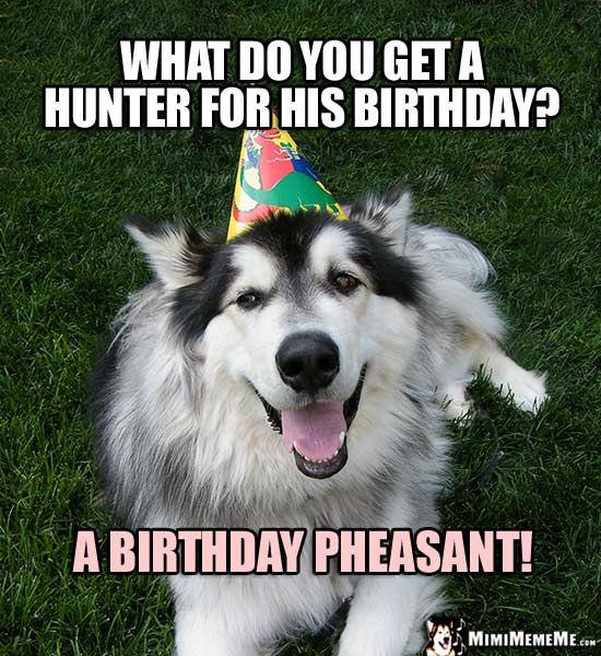 Party Dog Asks: What do you get a hunter for his birthday? A Birthday Pheasant!