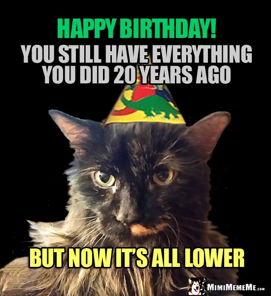 Party Cats Says: Happy Birthday! You still have everything you did 20 years ago, but now it's all lower.