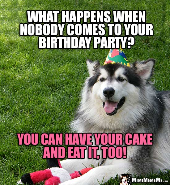 Party Dog Comments: What happens when nobody comes to your birthday party? You can have your cake and eat it, too!