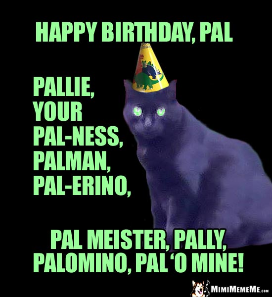 Party Cat Says: Happy Birthday, Pal, Pallie, Your Pal-ness, Palman...