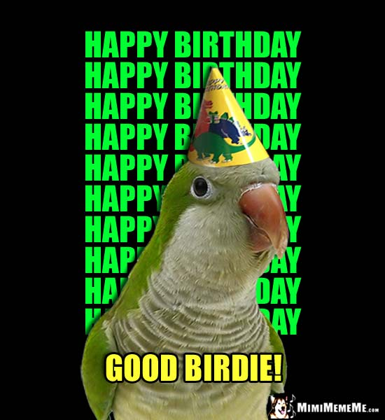 Funny Parrot wishes you Happy Birthday, Happy Birthday, Happy Birthday... Good Birdie!