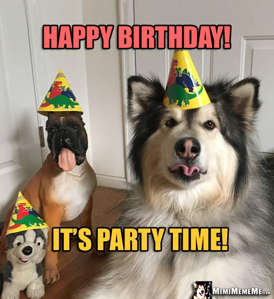 Dog & Dog Toys Wearing Party Hats Say: Happy Birthday! It's Party Time!