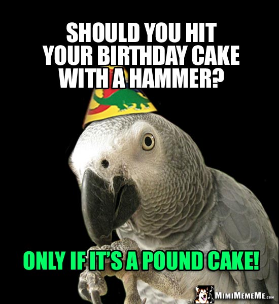 Party Parrot Asks: Should you hit your birthday cake with a hammer? Only if it's a Pound Cake!