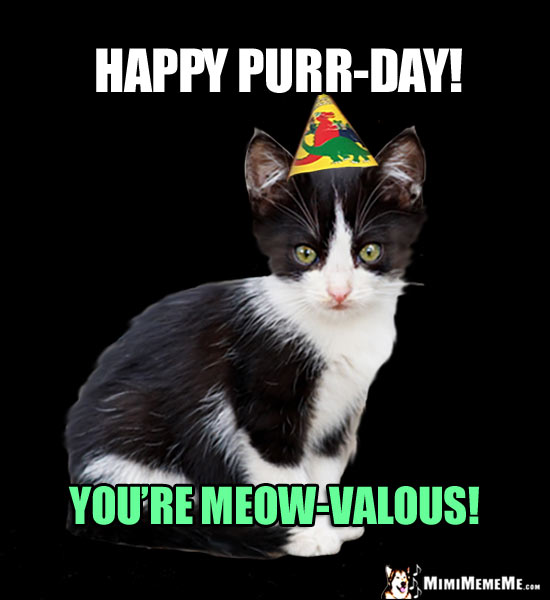 Party Kitten Says: Happy Purr-Day! You're Meow-Valous!
