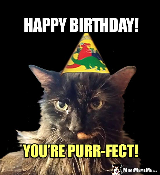 Fancy Party Cat Says: Happy Birthday! You're Purr-Fect!