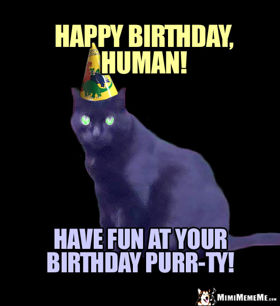 Party Cat Says: Happy Birthday, Human! Have fun at your birthday purr-ty!