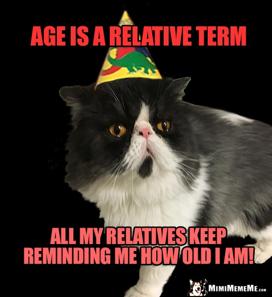 Meh Party Cat Says: Age is a relative term. All my relatives keep reminding me how old I am!