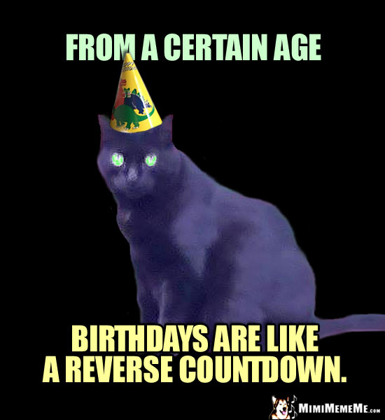Dire Party Cat Says: From a certain age, birthdays are like a reverse countdown.