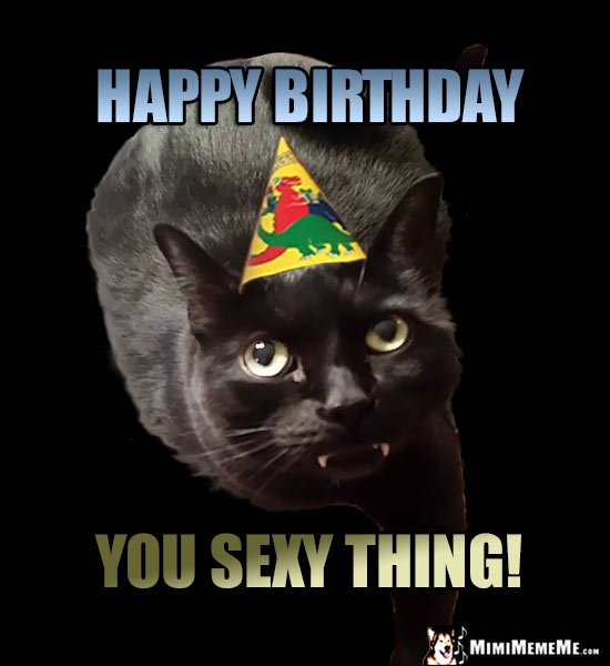 Black Party Cat Says: Happy Birthday, You Sexy Thing!