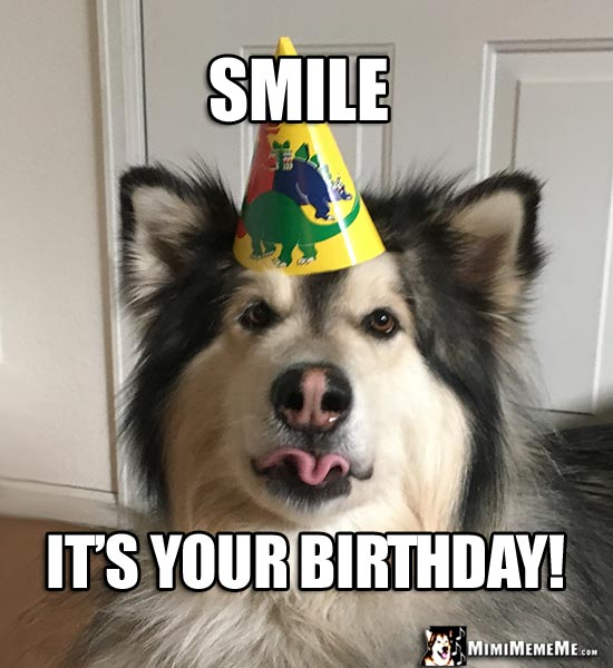 Party Dog Making a Funny Face Says: Smile, It's Your Birthday!