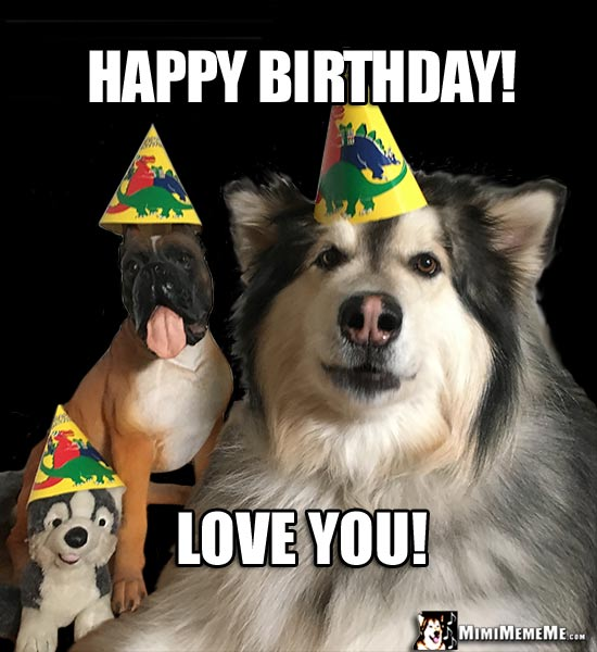 Dogs in Party Hats Say: Happy Birthday! Love You!
