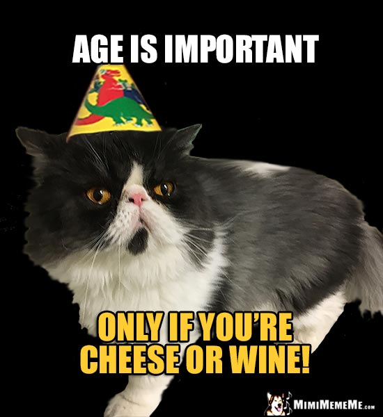 Reluctant Party Cat Says: Age is important only if you're cheese or wine!
