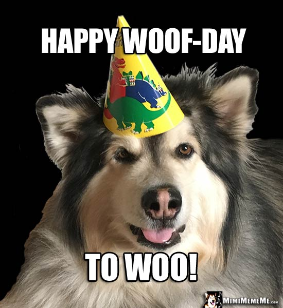 Handsome Dog in Party Hat Says: Happy Woof-Day to Woo!