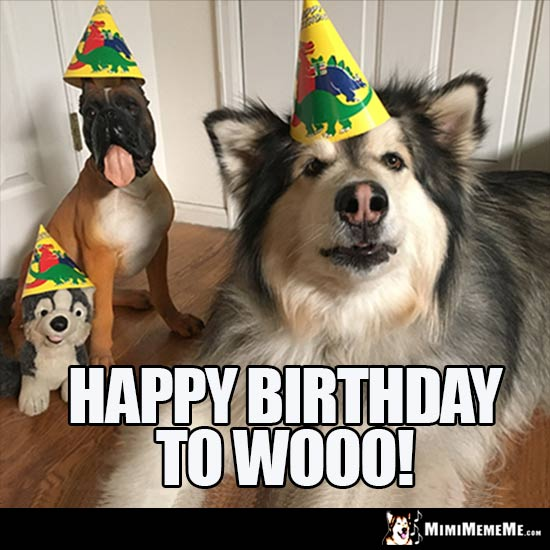 Big Dog and Toy Dogs in party hats say: Happy Birthday to WOOO!