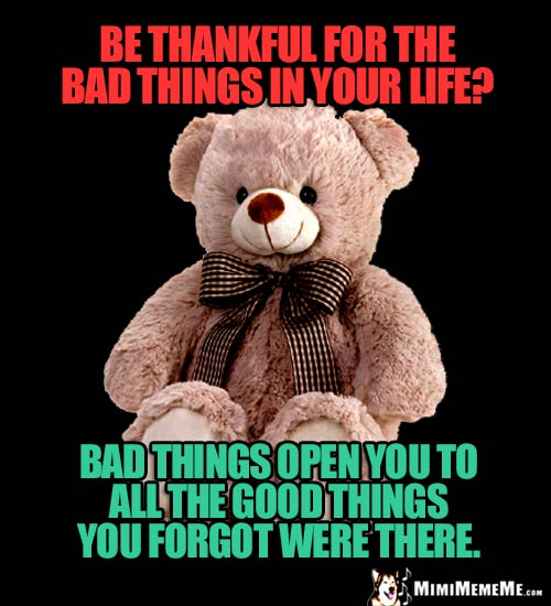 Inspirational Bear: Be thankful for the bad things in your life? Bad things open you to all the good things you forgot were there.