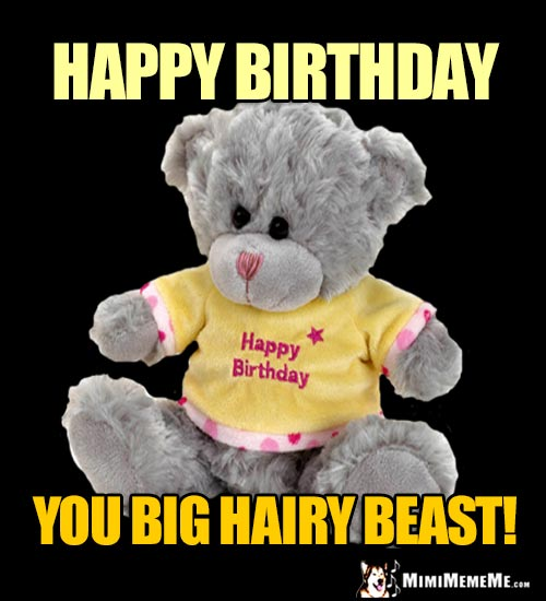 Teddy Bear Says: Happy Birthday You Big Hairy Beast!