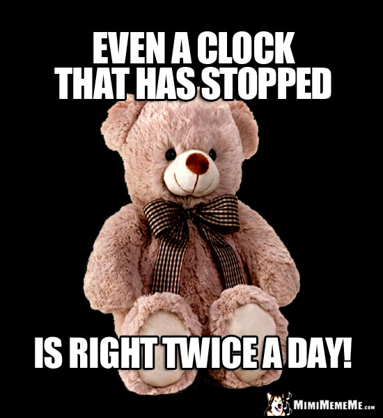 Wisdom Bear Says: Even a clock that has stopped is right twice a day!