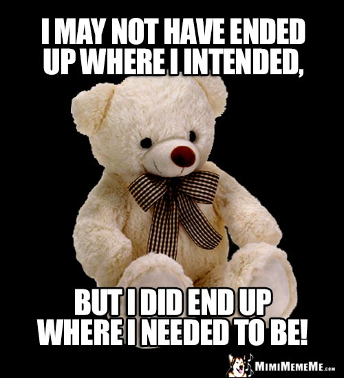 Sage Bear Says: I may not have ended up where I intended, but I did end up where I needed to be!